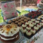 Mayflower Events Yummy Cakes