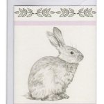Deborah-Ballinger-Illustrations-Rabbit