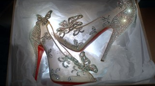 Cinderella Style Shoes
